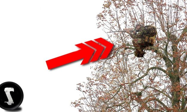Sniper Climbs Tree and Destroys (45 Feet High)