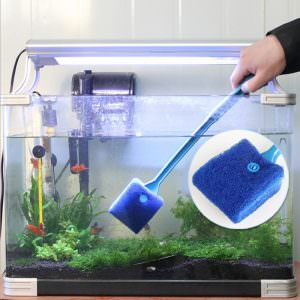 Regular Aquarium Maintenance - Your Fish Will Thank You!