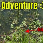 Pond Adventure & Almost Meeting A Snake